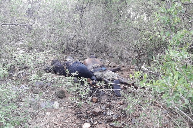 Hallan cuerpos con impactos de bala en la cabeza y huellas de tortura en Ajalpan