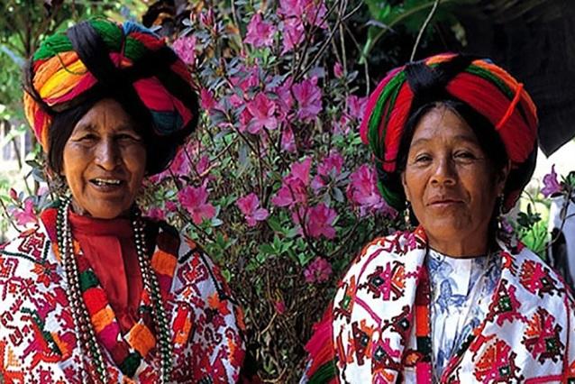Axolotl, el sitio que te permite hacer traducciones del náhuatl al español
