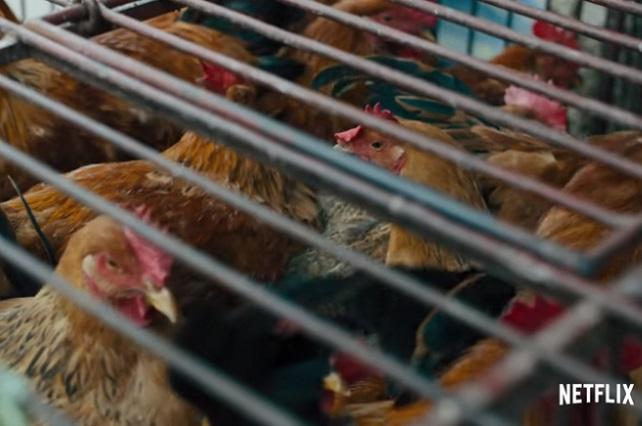 Netflix estrena Pandemic, documental que explica los virus letales