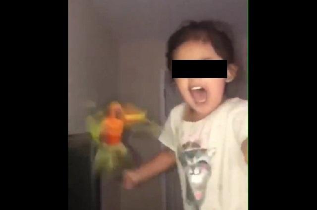 Niña entrena a pájaro para que ataque cuando grita