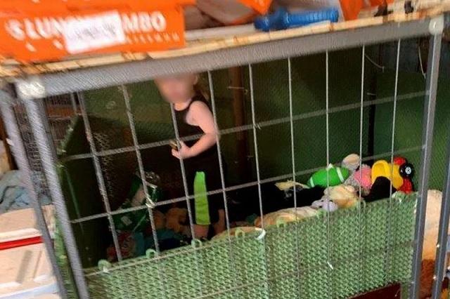 Rescatan a bebé en EU; permanecía encerrado con animales y marihuana