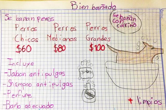 Niño de 7 años inicia su negocio de bañar perros y diseña tierno cartel