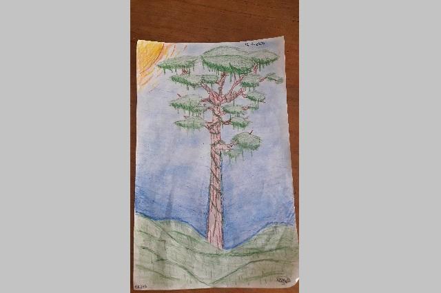 En Atlixco, niños pintan y escriben para escapar del aislamiento