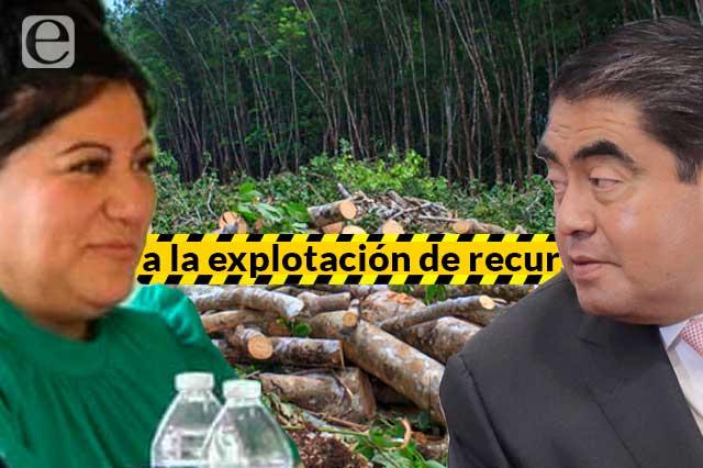 Minas y minerales, detrás del conflicto político en Coyomeapan
