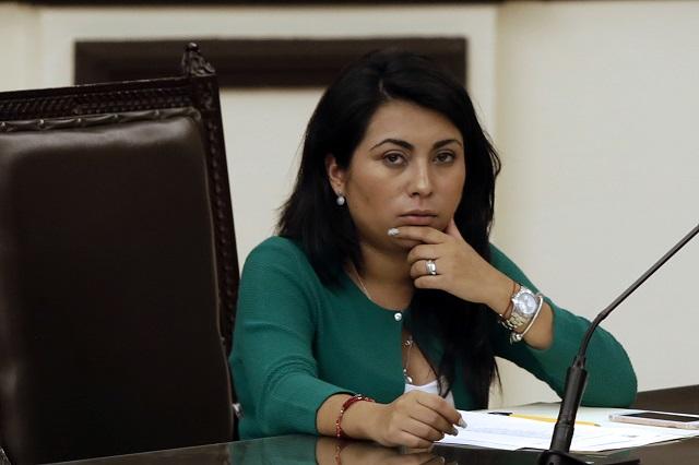 Viable, renovar la dirigencia del PES en Puebla: diputada