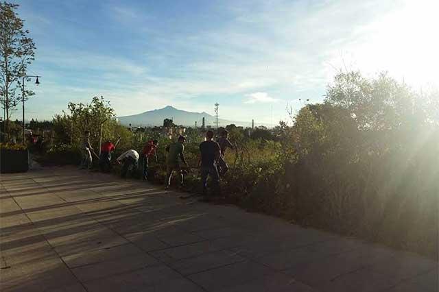 Acusan que edil de San Andrés prosigue obras en zona arqueológica de Cholula