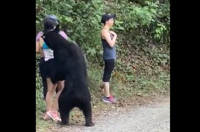 Foto: Revelan la selfie que se tomó la chica con oso que la sorprendió