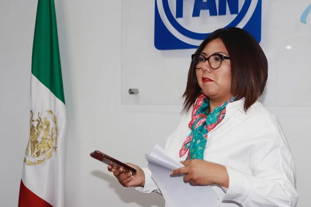Doger no suplirá a Cárdenas, se unirá a frente anti Barbosa: PAN