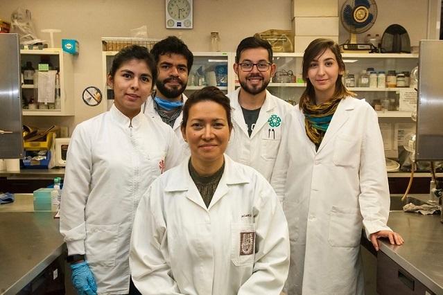 Elimina IPN cien por ciento virus del papiloma humano