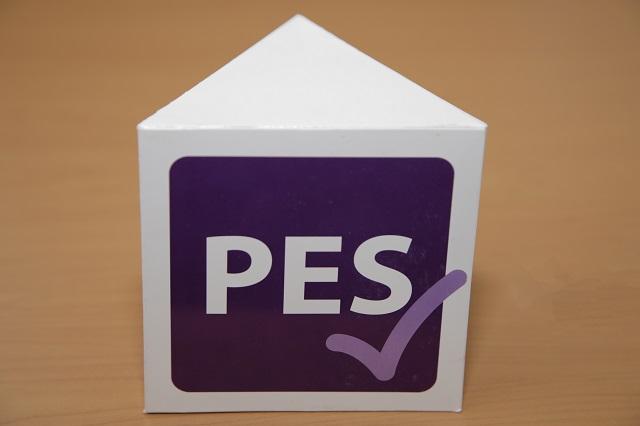 PES destapa 8 precandidatos a diputados federales de Puebla