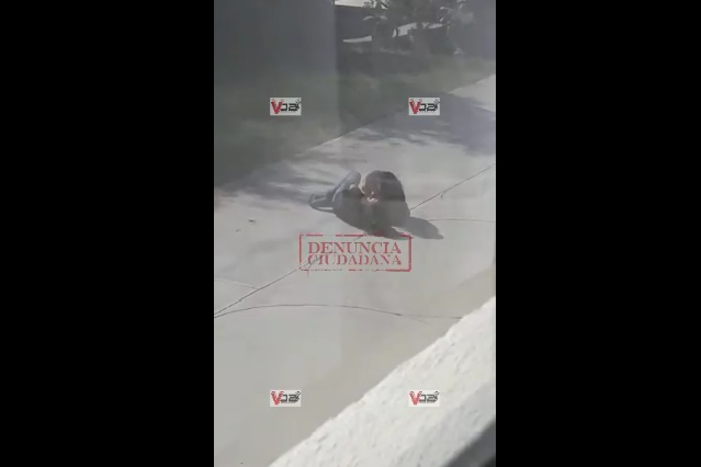 Difunden otro video de la mujer que apuñaló a joven en motel