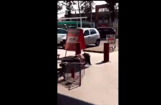 Golpean a mujer que quería entrar al super en México