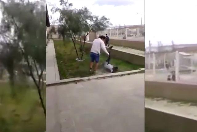 Graban brutal pelea entre estudiantes argentinos