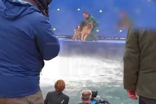 Video de maltrato animal causa que suspendan premier de película