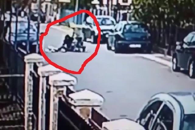 Perro ataca a hombre al intentar asaltar a mujer