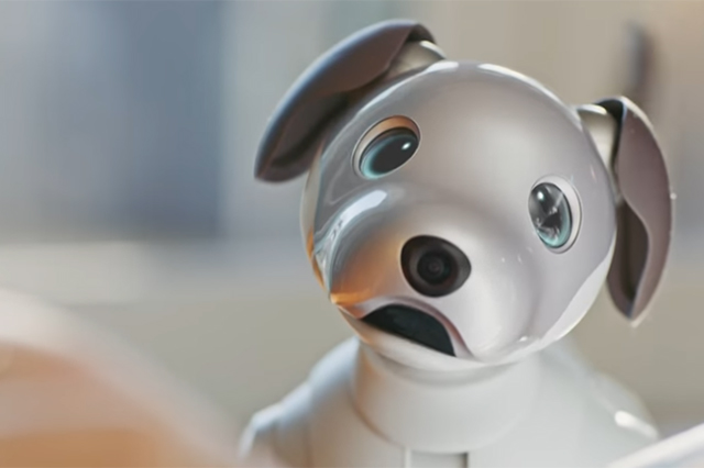 Aibo, el perro robot que se agotó apenas salió al mercado