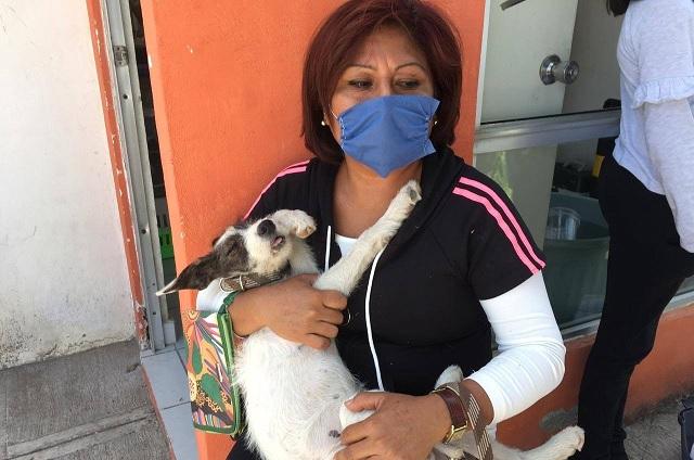 Control canino prepara 1200 esterilizaciones en Atlixco