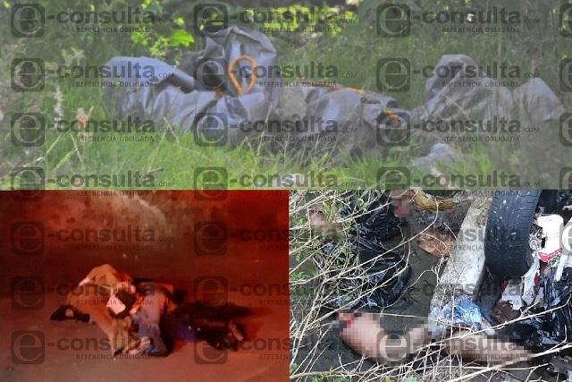 En 72 horas el narco deja 6 cuerpos embolsados en Puebla