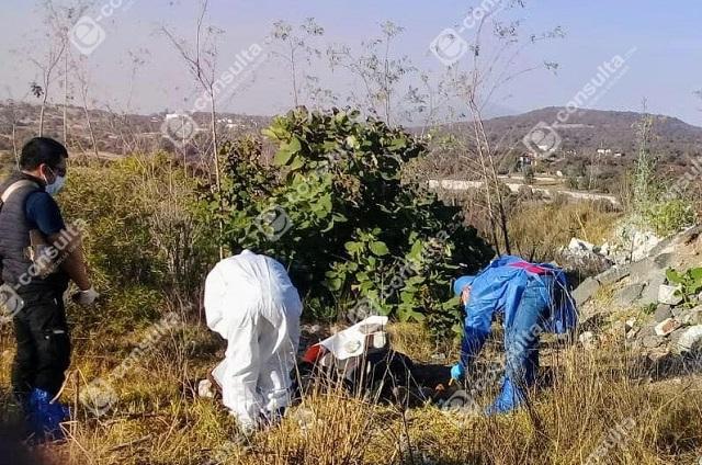 Ejecutados de La Guadalupana son los plagiados en lote de La Paz