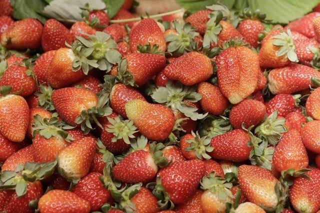 Una rutina de ejercicio y con estas frutas podrías perder peso