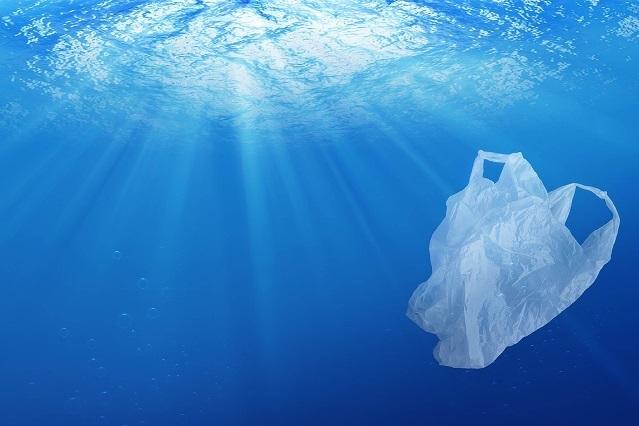 Más de 13 millones de desechos plásticos llegan cada año a los océanos