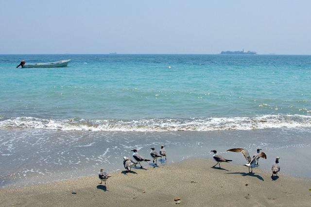 Por encierro, playas de Veracruz lucen increíble color turquesa