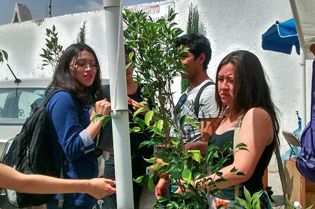 Con performance, protestan por cada árbol derribado por el gobierno