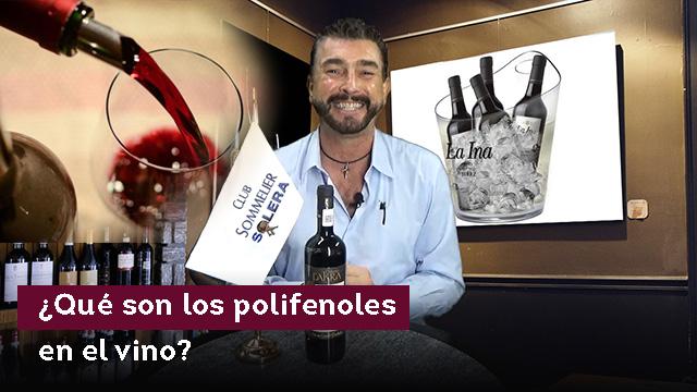 ¿Qué son los polifenoles en el vino?