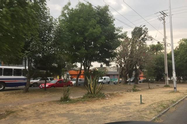 Deteriora ambulantaje área verde en Camino a La Resurrección