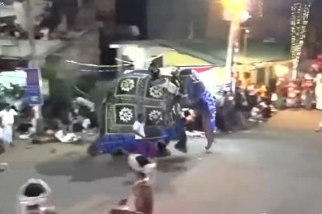 Elefante enloquece y pisotea a personas durante festival