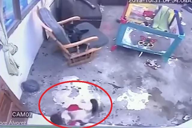 Video: Gatita salva a bebé de una caída mortal