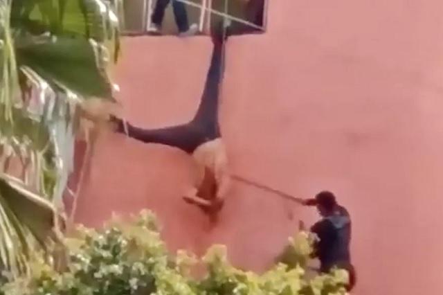 Video: ladrón queda colgado y lo agarran de piñata