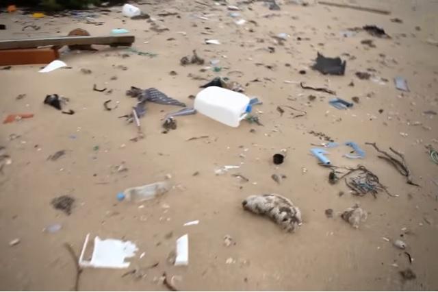 Panamá, primer país centroamericano que prohibe bolsas de plástico