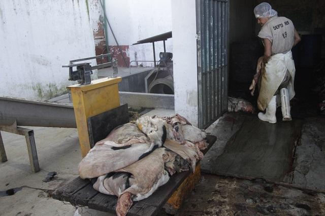 Sin planta tratadora y con deuda por descargas, el Rastro de Puebla
