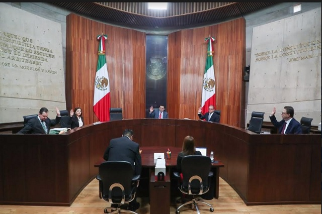 Reelección en Morena hasta 2 veces a partir de noviembre: TEPJF