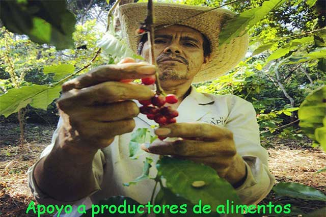 Apoyo a productores de alimentos en municipios de México