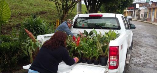 Decomisa Profepa especies protegidas en mercado de Tenango de las Flores