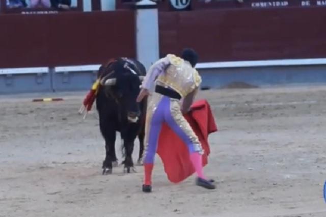Foto: Captura de pantalla de YouTube / Adrenalina y Tradición Ángel González T