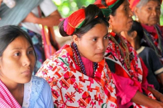 Grandes rezagos en derechos sociales de pueblos indígenas: Coneval