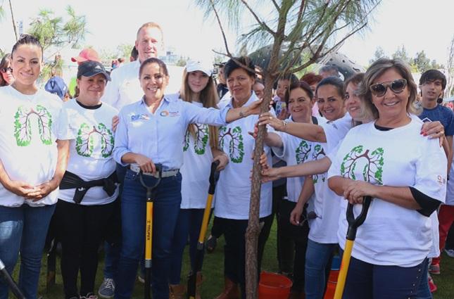 Presidenta del DIF encabeza cruzada de reforestación