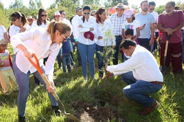 Personal de SEP se suma a campaña estatal de reforestación