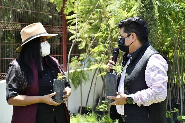 Realizan Cristina Tello y Toño Teutli reforestación en Coronango