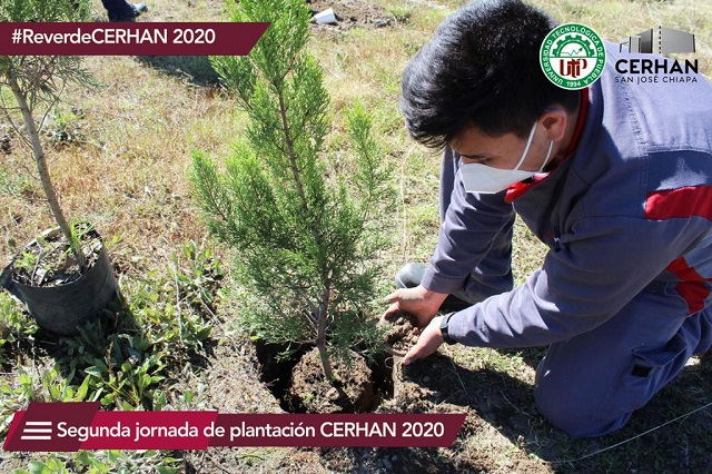 Universidad Tecnológica de Puebla genera espacios sustentables