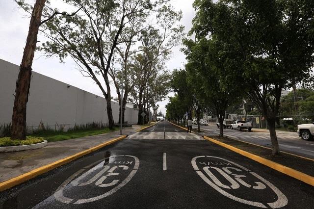 Relamina Ayuntamiento de Puebla Calle de Las Flores