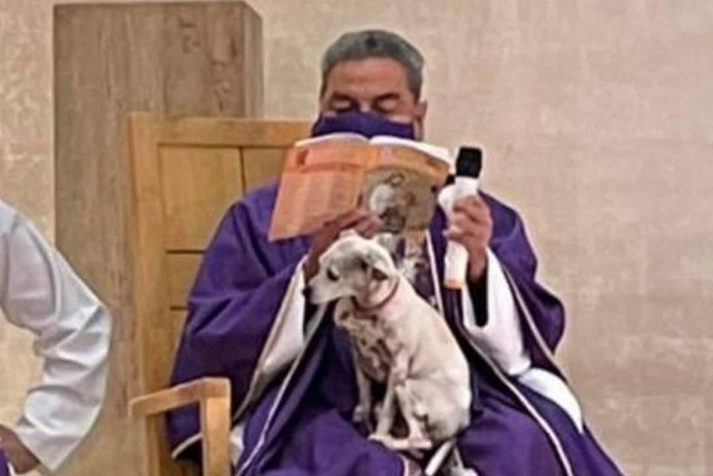 Sacerdote da misa con su perrita en las piernas por esta razón