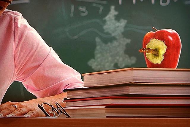 Reprueban Ley de Educación por abusiva e imponerse al vapor