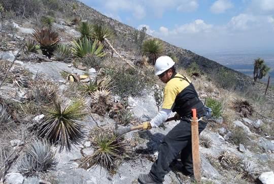 Mantiene Cruz Azul cuidado del medio ambiente en Puebla