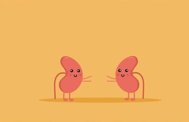 4 hábitos inocentes que matan tus riñones poco a poco