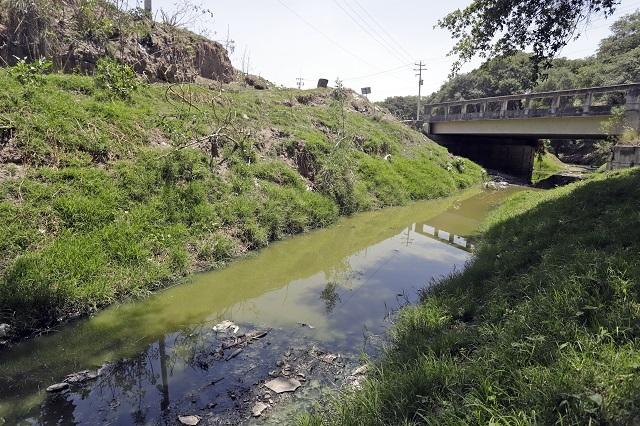 Será Puebla sede virtual del Día del Medio Ambiente