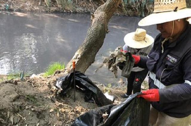 Participan activistas en jornada internacional de limpieza